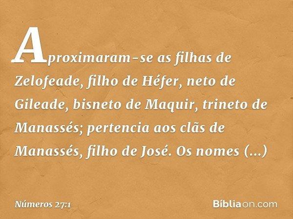 Aproximaram-se as filhas de Zelofeade, filho de Héfer, neto de Gileade, bisneto de Maquir, trineto de Manassés; pertencia aos clãs de Manassés, filho de José. O