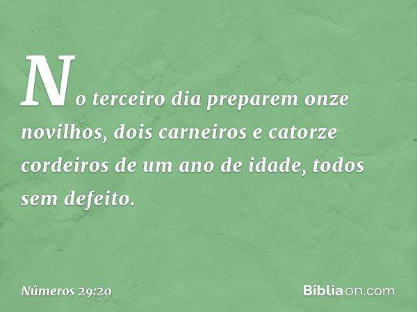 """""""No terceiro dia preparem onze novilhos, dois carneiros e catorze cordeiros de um ano de idade, todos sem defeito. -- Números 29:20"""