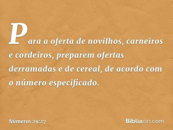Para a oferta de novilhos, carneiros e cordeiros, preparem ofertas derramadas e de cereal, de acordo com o número especificado. -- Números 29:27