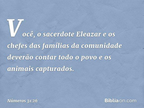 """""""Você, o sacerdote Eleazar e os chefes das famílias da comunidade deverão contar todo o povo e os animais capturados. -- Números 31:26"""