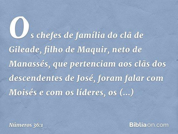 Os chefes de família do clã de Gileade, filho de Maquir, neto de Manassés, que pertenciam aos clãs dos descendentes de José, foram falar com Moisés e com os líd