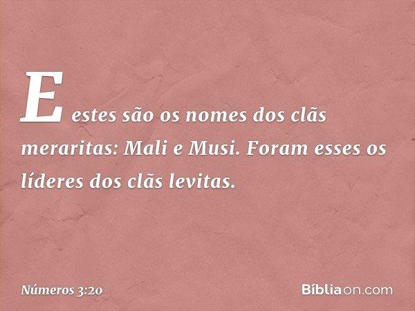 E estes são os nomes dos clãs meraritas: Mali e Musi. Foram esses os líderes dos clãs levitas. -- Números 3:20