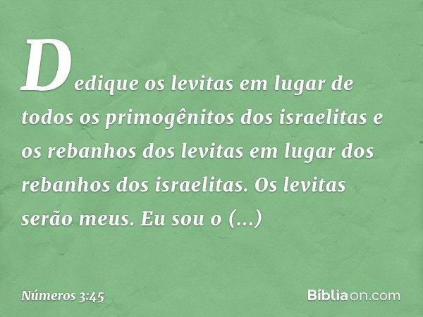 """""""Dedique os levitas em lugar de todos os primogênitos dos israelitas e os rebanhos dos levitas em lugar dos rebanhos dos israelitas. Os levitas serão meus. Eu s"""