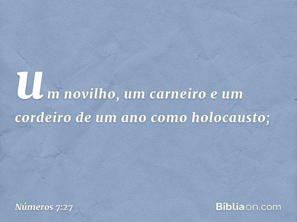 um novilho, um carneiro e um cordeiro de um ano como holocausto; -- Números 7:27