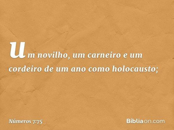 um novilho, um carneiro e um cordeiro de um ano como holocausto; -- Números 7:75