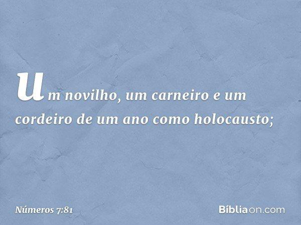 um novilho, um carneiro e um cordeiro de um ano como holocausto; -- Números 7:81