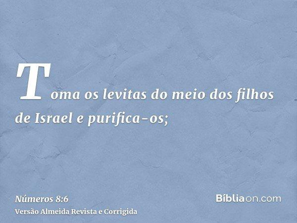 Toma os levitas do meio dos filhos de Israel e purifica-os;