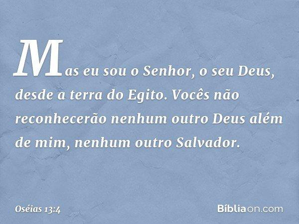 """""""Mas eu sou o Senhor, o seu Deus, desde a terra do Egito. Vocês não reconhecerão nenhum outro Deus além de mim, nenhum outro Salvador. -- Oséias 13:4"""
