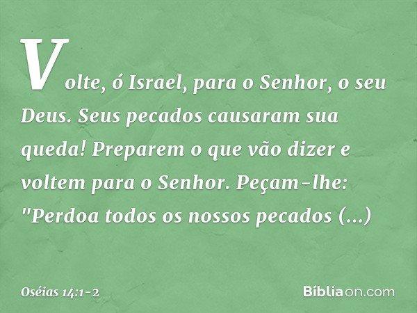 """Volte, ó Israel, para o Senhor, o seu Deus. Seus pecados causaram sua queda! Preparem o que vão dizer e voltem para o Senhor. Peçam-lhe: """"Perdoa todos os nossos"""