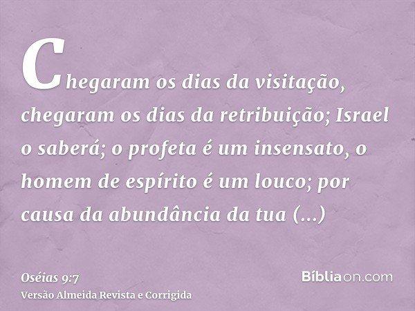 Chegaram os dias da visitação, chegaram os dias da retribuição; Israel o saberá; o profeta é um insensato, o homem de espírito é um louco; por causa da abundânc