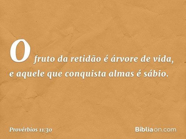 O fruto da retidão é árvore de vida, e aquele que conquista almas é sábio. -- Provérbios 11:30
