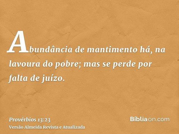 Abundância de mantimento há, na lavoura do pobre; mas se perde por falta de juízo.