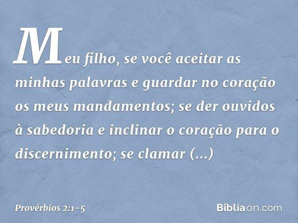 Meu filho, se você aceitar as minhas palavras e guardar no coração os meus mandamentos; se der ouvidos à sabedoria e inclinar o coração para o discernimento; se