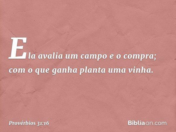 Ela avalia um campo e o compra; com o que ganha planta uma vinha. -- Provérbios 31:16