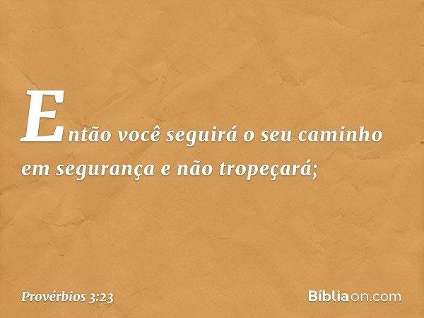 Então você seguirá o seu caminho em segurança e não tropeçará; -- Provérbios 3:23