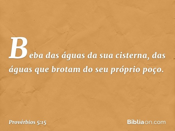 Beba das águas da sua cisterna, das águas que brotam do seu próprio poço. -- Provérbios 5:15