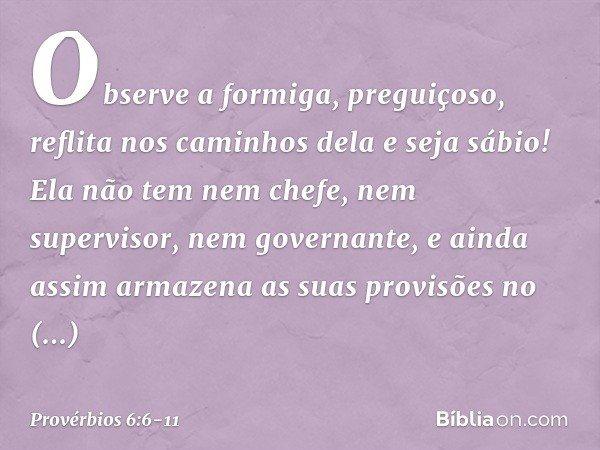 Provérbios 6 6 11 Bíblia