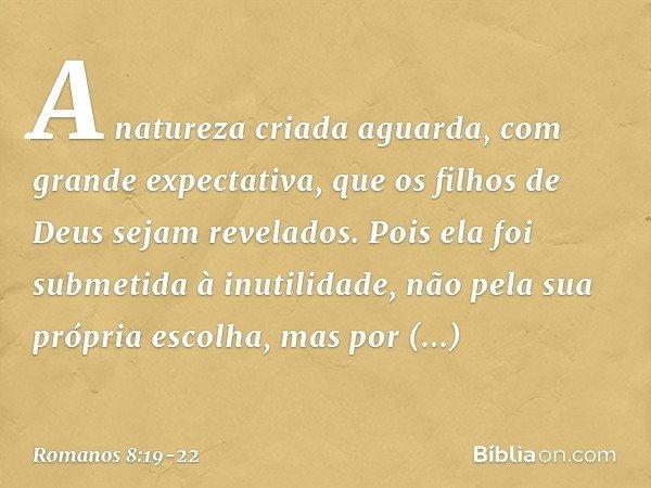 A natureza criada aguarda, com grande expectativa, que os filhos de Deus sejam revelados. Pois ela foi submetida à inutilidade, não pela sua própria escolha, ma