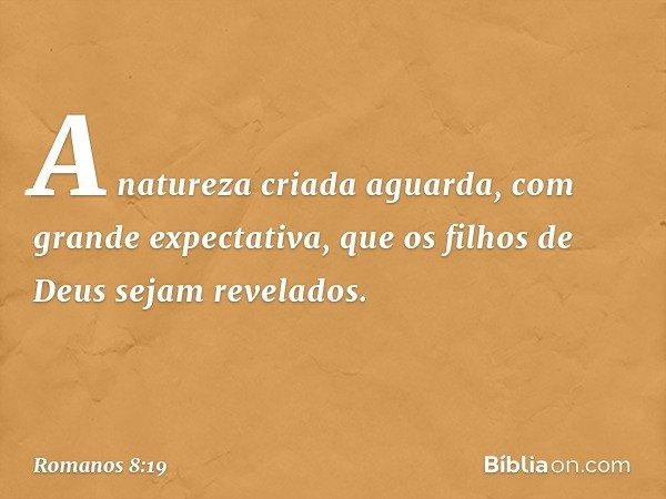 A natureza criada aguarda, com grande expectativa, que os filhos de Deus sejam revelados. -- Romanos 8:19