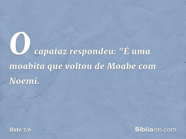 """O capataz respondeu: """"É uma moabita que voltou de Moabe com Noemi. -- Rute 2:6"""
