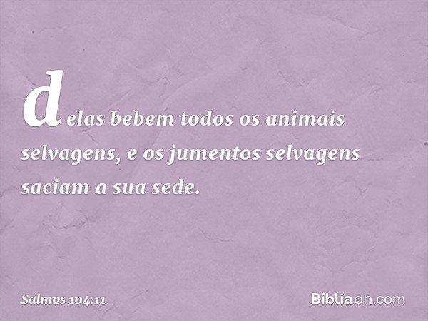 delas bebem todos os animais selvagens, e os jumentos selvagens saciam a sua sede. -- Salmo 104:11