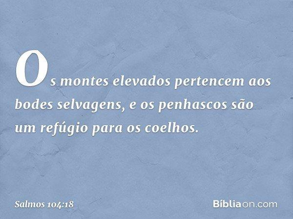 Os montes elevados pertencem aos bodes selvagens, e os penhascos são um refúgio para os coelhos. -- Salmo 104:18