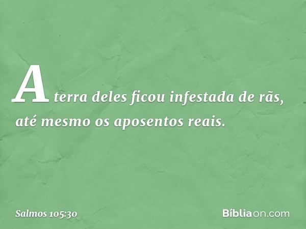 A terra deles ficou infestada de rãs, até mesmo os aposentos reais. -- Salmo 105:30