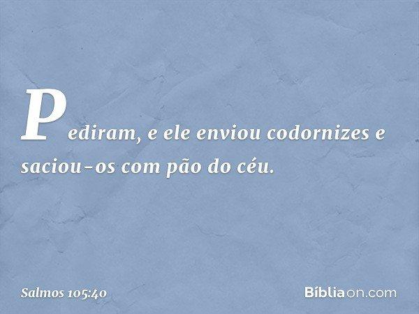 Pediram, e ele enviou codornizes e saciou-os com pão do céu. -- Salmo 105:40