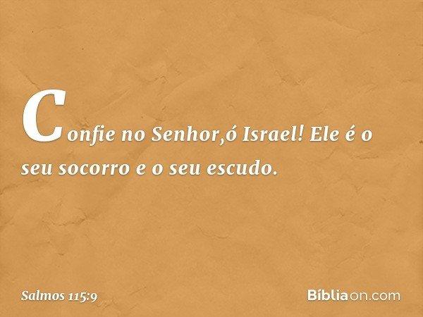 Confie no Senhor,ó Israel! Ele é o seu socorro e o seu escudo. -- Salmo 115:9