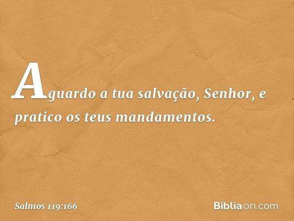 Aguardo a tua salvação, Senhor, e pratico os teus mandamentos. -- Salmo 119:166
