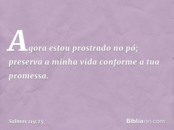 Agora estou prostrado no pó; preserva a minha vida conforme a tua promessa. -- Salmo 119:25