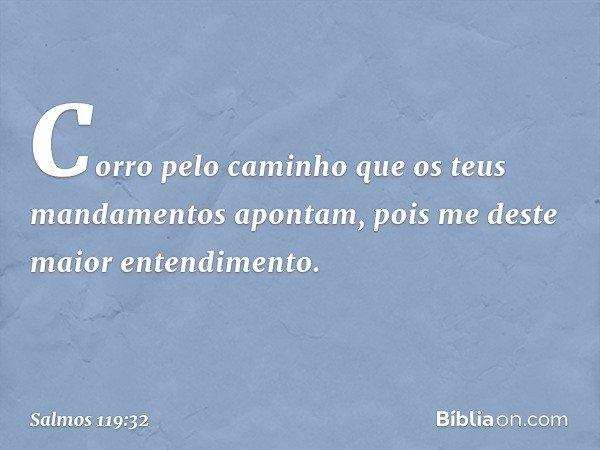 Corro pelo caminho que os teus mandamentos apontam, pois me deste maior entendimento. -- Salmo 119:32