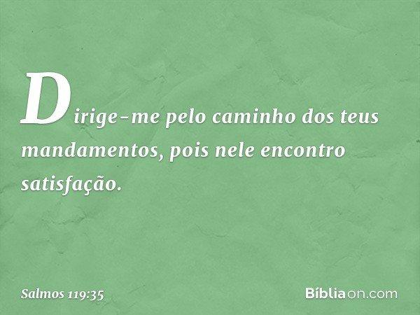 Dirige-me pelo caminho dos teus mandamentos, pois nele encontro satisfação. -- Salmo 119:35
