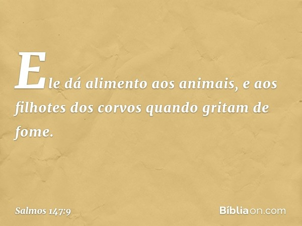 Ele dá alimento aos animais, e aos filhotes dos corvos quando gritam de fome. -- Salmo 147:9
