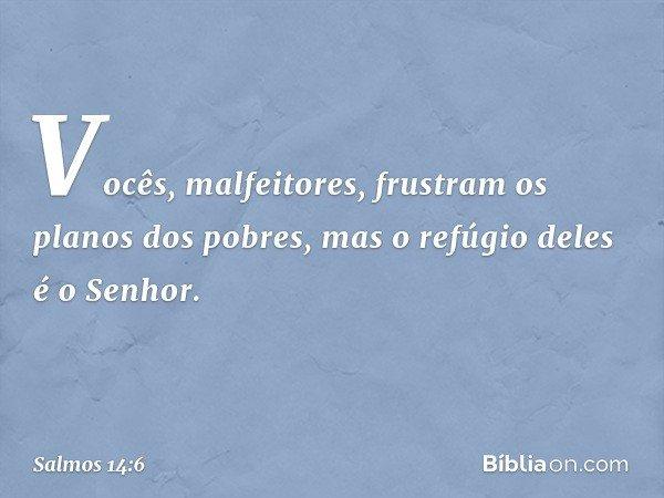 Vocês, malfeitores, frustram os planos dos pobres, mas o refúgio deles é o Senhor. -- Salmo 14:6