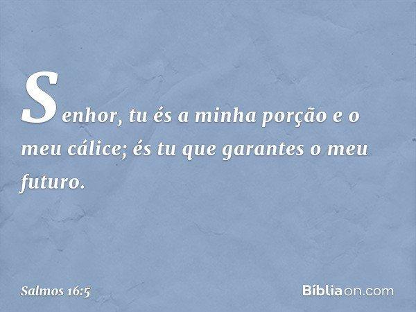 Senhor, tu és a minha porção e o meu cálice; és tu que garantes o meu futuro. -- Salmo 16:5