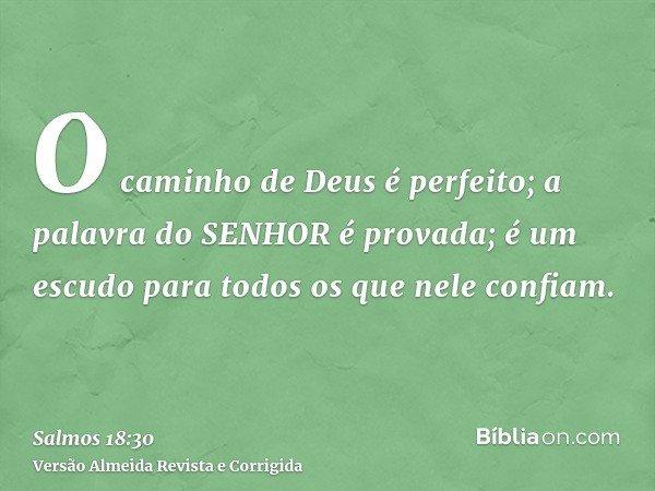 O caminho de Deus é perfeito; a palavra do SENHOR é provada; é um escudo para todos os que nele confiam.