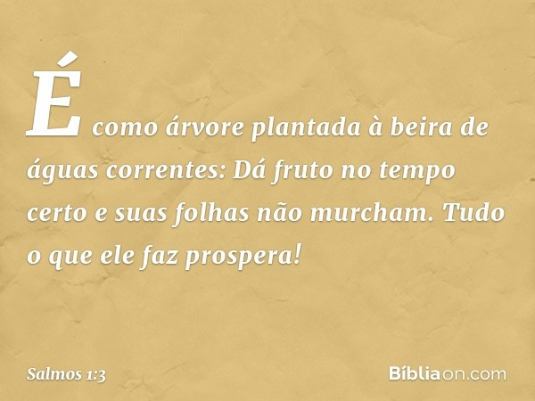 É como árvore plantada à beira de águas correntes: Dá fruto no tempo certo e suas folhas não murcham. Tudo o que ele faz prospera! -- Salmo 1:3