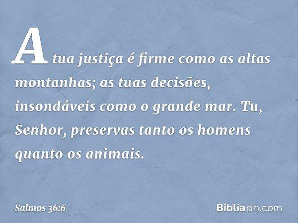 A tua justiça é firme como as altas montanhas; as tuas decisões, insondáveis como o grande mar. Tu, Senhor, preservas tanto os homens quanto os animais. -- Salm