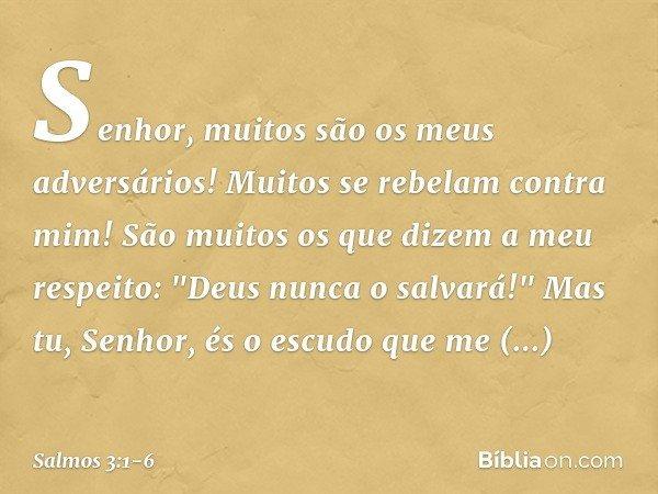 """Senhor, muitos são os meus adversários! Muitos se rebelam contra mim! São muitos os que dizem a meu respeito: """"Deus nunca o salvará!"""" Mas tu, Senhor, és o escud"""
