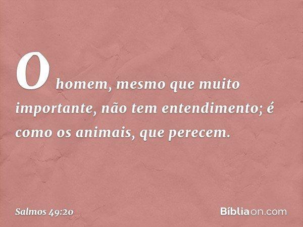 O homem, mesmo que muito importante, não tem entendimento; é como os animais, que perecem. -- Salmo 49:20