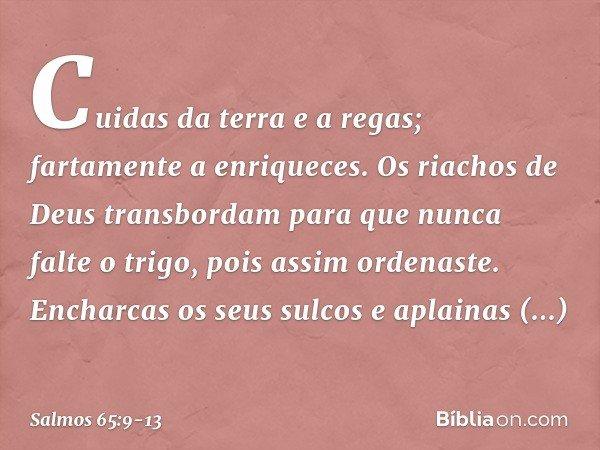 Cuidas da terra e a regas; fartamente a enriqueces. Os riachos de Deus transbordam para que nunca falte o trigo, pois assim ordenaste. Encharcas os seus sulcos