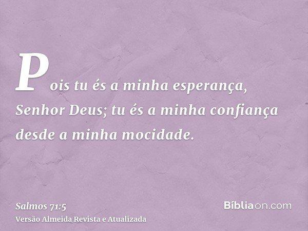 Pois tu és a minha esperança, Senhor Deus; tu és a minha confiança desde a minha mocidade.