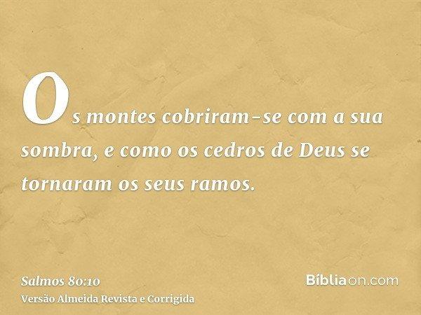 Os montes cobriram-se com a sua sombra, e como os cedros de Deus se tornaram os seus ramos.