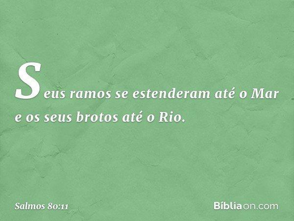 Seus ramos se estenderam até o Mar e os seus brotos até o Rio. -- Salmo 80:11
