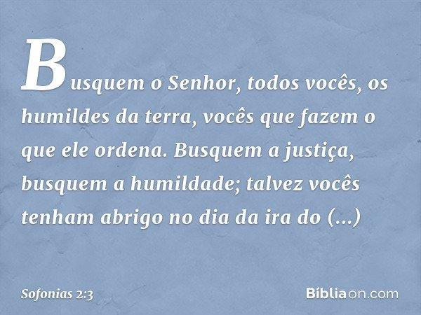 Busquem o Senhor, todos vocês, os humildes da terra, vocês que fazem o que ele ordena. Busquem a justiça, busquem a humildade; talvez vocês tenham abrigo no dia