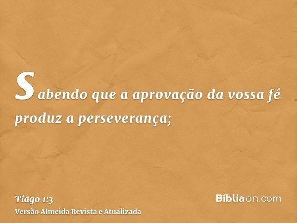 sabendo que a aprovação da vossa fé produz a perseverança;