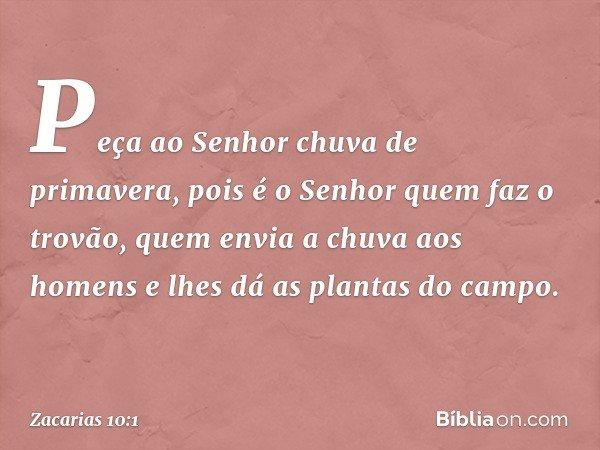 Peça ao Senhor chuva de primavera, pois é o Senhor quem faz o trovão, quem envia a chuva aos homens e lhes dá as plantas do campo. -- Zacarias 10:1