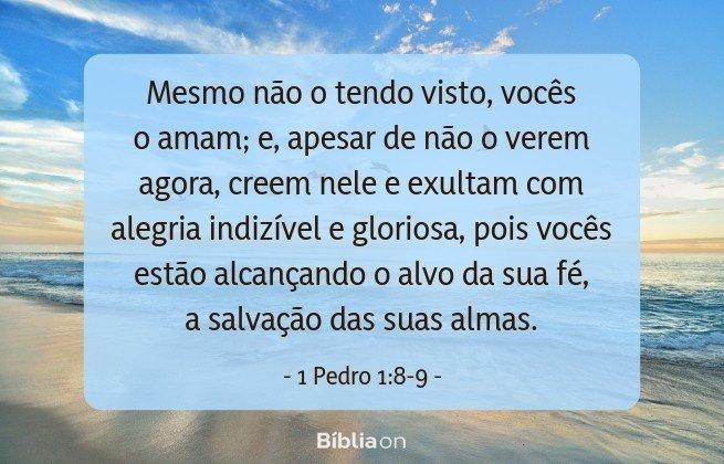 Mesmo não o tendo visto, vocês o amam; e, apesar de não o verem agora, creem nele e exultam com alegria indizível e gloriosa, pois vocês estão alcançando o alvo da sua fé, a salvação das suas almas. 1 Pedro 1:8-9