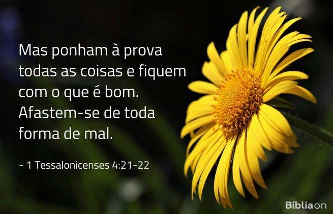 Mas ponham à prova todas as coisas e fiquem com o que é bom. Afastem-se de toda forma de mal. 1 Tessalonicenses 4:21-22